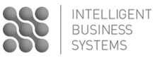 Intelligent Business Systems
